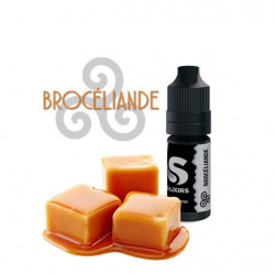 Concentré Brocéliande 10ml