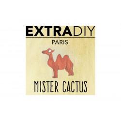 Mister Cactus Aromes Extradiy Extrapure 10 ml